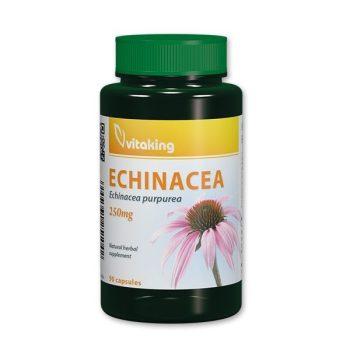 Echinacea 400mg (100) Bíbor kasvirág Vitaking