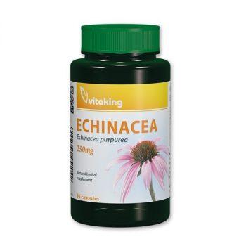 Echinacea 250mg (90) Bíbor kasvirág Vitaking