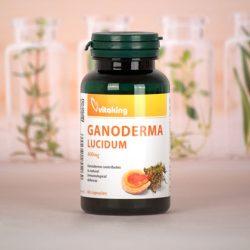 Ganoderma lucidum (pecsétviaszgomba) 400mg (60) Vitaking