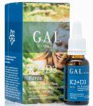 K2+D3 vitamin Forte 20ml GAL